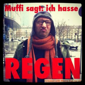 Ringelsuse.de-Blog Award Muffi Regen