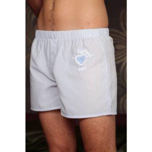 Best-Boyfriend-Boxer Geschenk für Freund/Ehemann hellblau mit Herz blau weiß kariert von Ringelsuse
