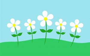 Frühlingsangebote bei Ringelsuse