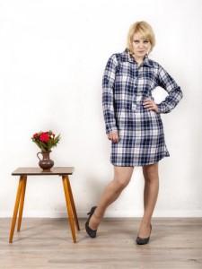 Hemdblusen-Kleid im Holzfäller-Stil blau weiß kariert